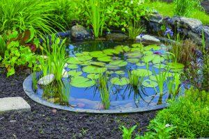preformed_pond